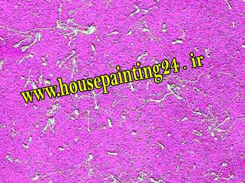 نقاشی ساختمان رنگین کمان